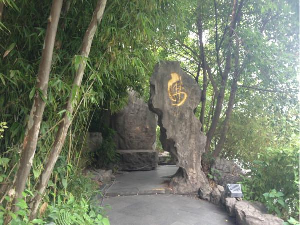 都说桂林山水甲天下,来了桂林发现这里的山山水水的确很秀