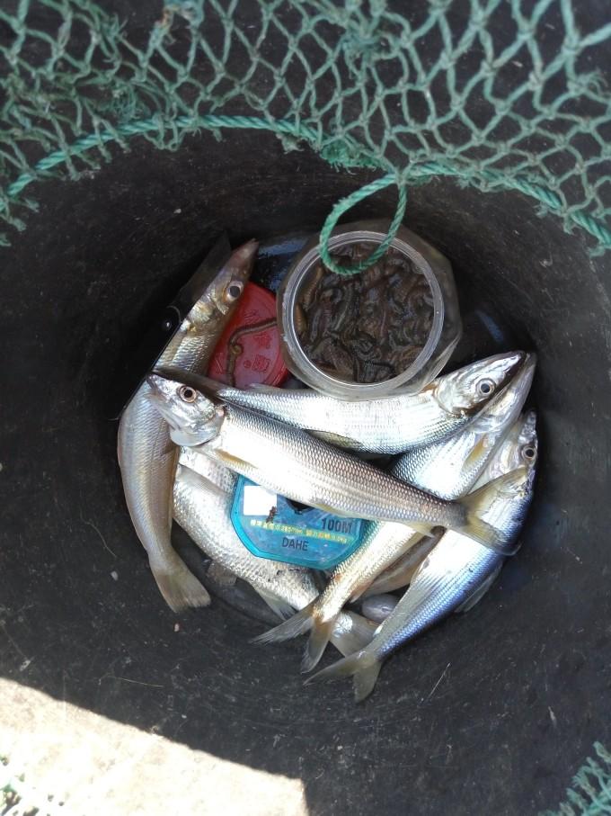 还有码头吃海鲜大排档